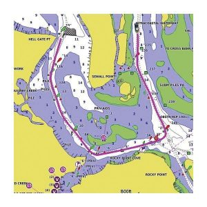 GARMIN BlueChart g3 MicroSD/SD Card Chart,US All & Canadian West Coast | 010-C1018-20